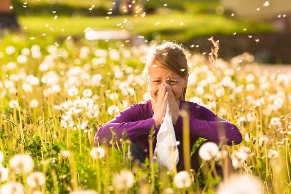 Alimentos para combatir alergias primaverales